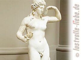 Hermaphroditen
