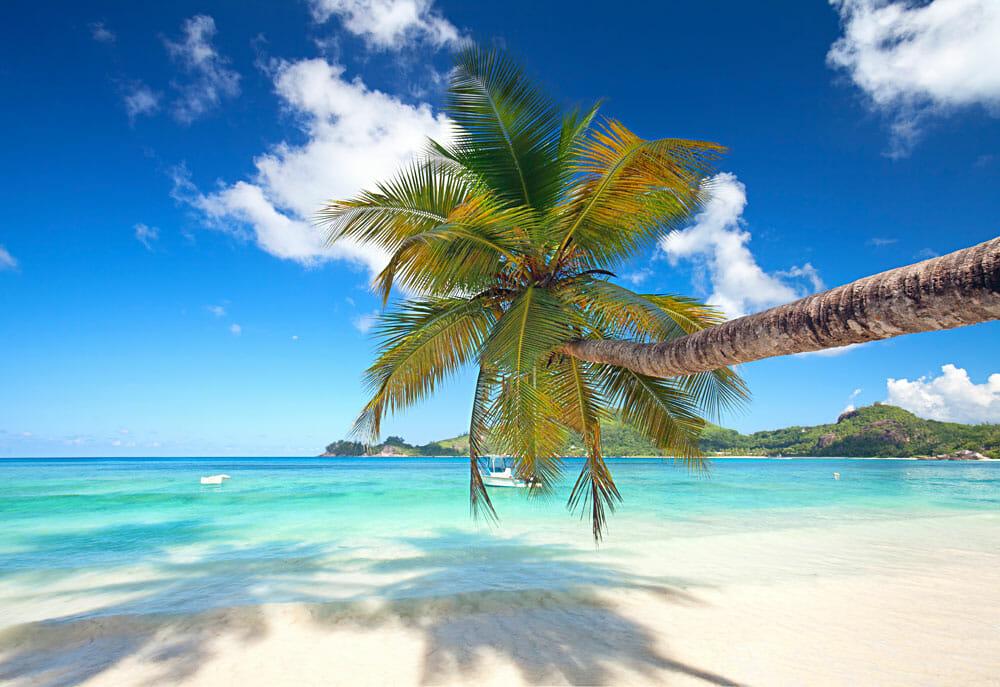 Seychellen - ein Stück vom Paradies
